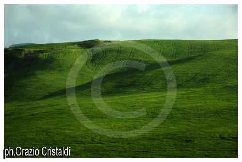 mi ricordo montagne verdi - Palermo (3152 clic)