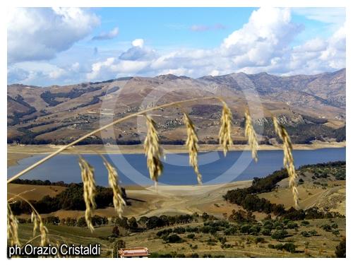 lago di pozzillo - Regalbuto (4818 clic)