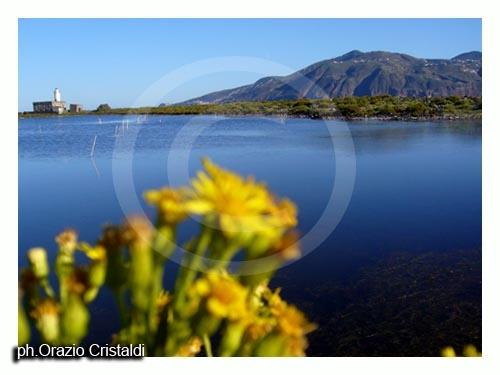 il lago di lingua  - Salina (3722 clic)
