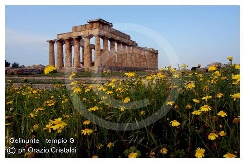tempio G - Selinunte (4859 clic)