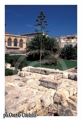 tempio di apollo - Siracusa (2596 clic)