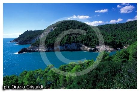 parco nazionale del gargano un tratto di costa (2434 clic)