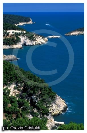 tratto di costa del parco nazionale del gargano (2353 clic)
