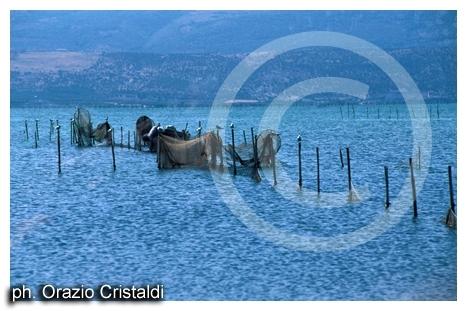 lago varano - Gargano (2039 clic)