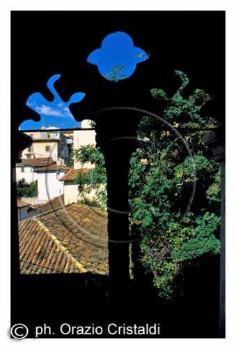 BIFORA - L'aquila (2540 clic)