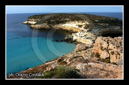 l'isola dei conigli - Lampedusa (5290 clic)