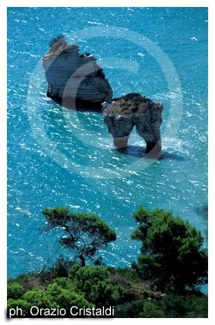 baia delle zagare - Mattinata (7106 clic)