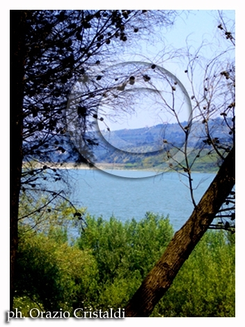 lago dell'Angitola - Pizzo calabro (2600 clic)