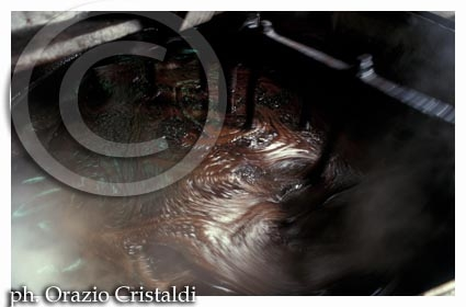 produzione liquirizia  - Rossano (3549 clic)