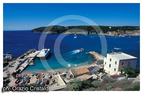 isole tremiti (2360 clic)