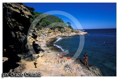isole tremiti (2554 clic)