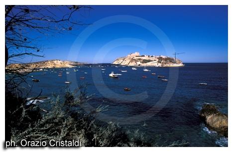 isole tremiti (2528 clic)