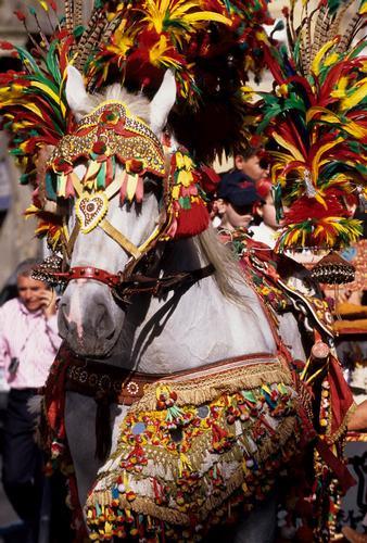 sfilta di cavalli - Caltagirone (5000 clic)