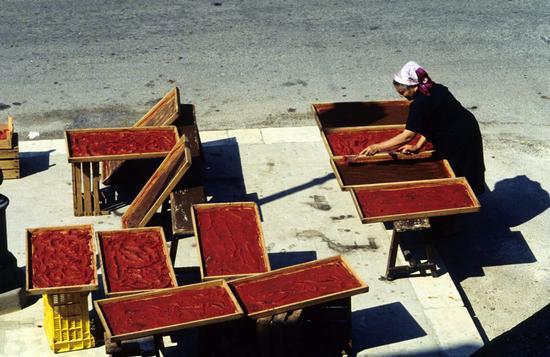 scicli, la tradizionale preparazione dell'estratto di pomodoro (8801 clic)