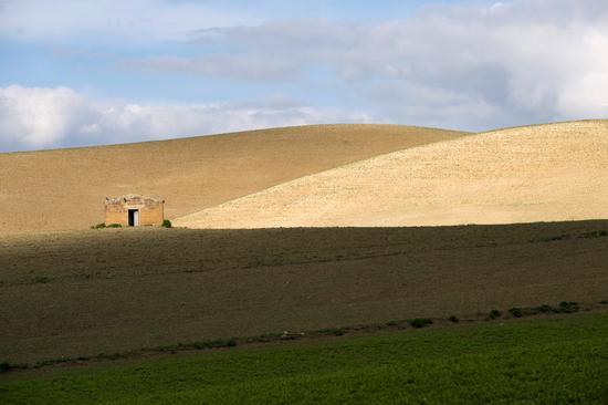 valguarnera, paesaggio agrario (4664 clic)