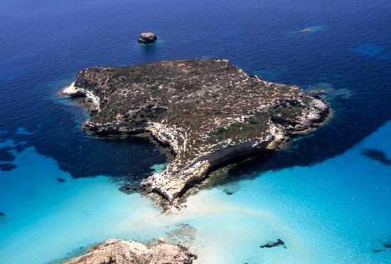 l'isola dei conigli vista dall'alto - Lampedusa (7921 clic)