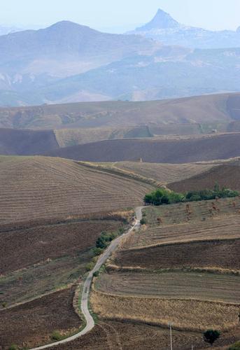 aragona, paesaggio rurale (3087 clic)