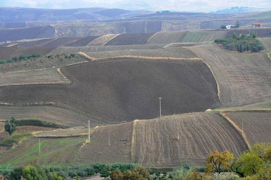 aragona, paesaggio rurale (4406 clic)