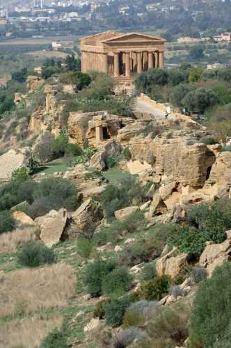 valle dei templi, tempio della concordia - Agrigento (2819 clic)