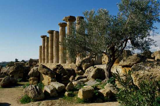 agrigento, tempio di ercole (3292 clic)