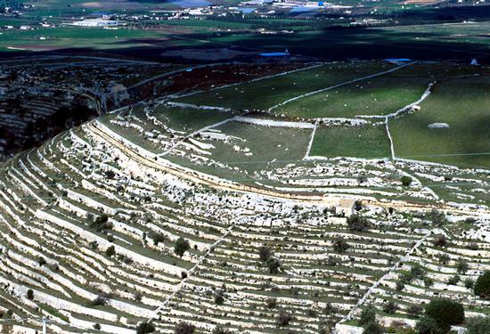 campagna iblea - Ragusa (5821 clic)