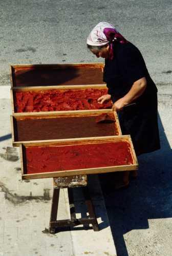 scicli, preparazione dell'estratto di pomodoro (5961 clic)