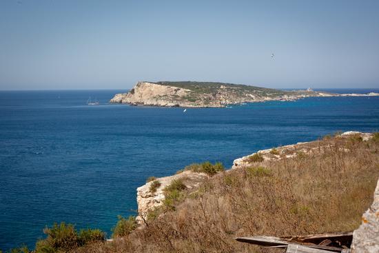 isole Tremiti, Capraia - TREMITI - inserita il 31-Jul-12