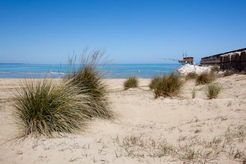 dune di Punta Penna - Vasto (4528 clic)