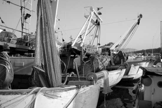 Vecchie Barche - Favignana (3808 clic)