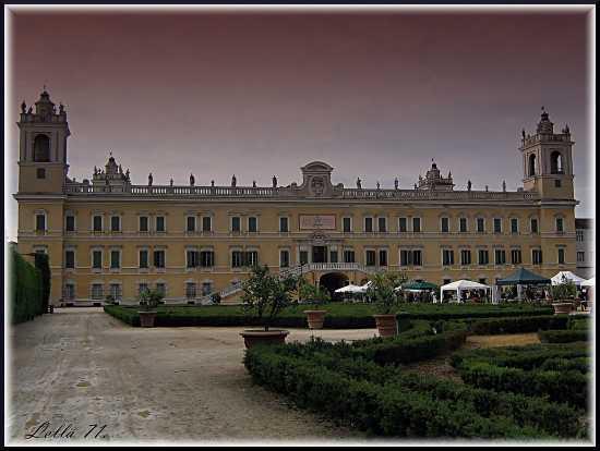 Palazzo Imperiale - Colorno (2781 clic)