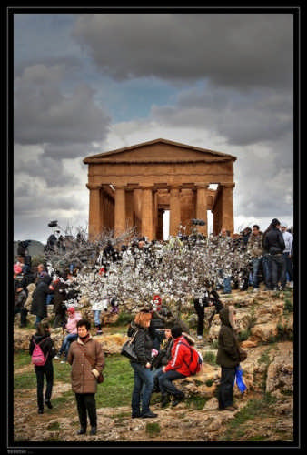Agrigento (3327 clic)