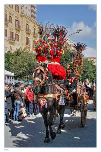 Mandorlo in Fiore ... - Agrigento (2541 clic)