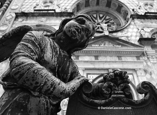 Basilica di Santa Maria Maggiore - Bergamo (2714 clic)