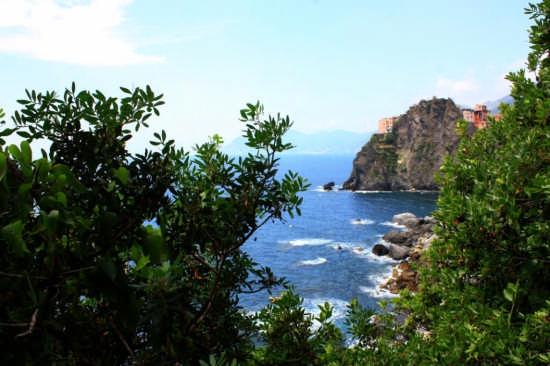 vista dalla via dell'amore - Manarola (2645 clic)