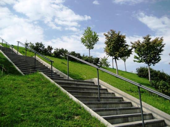 collina dei ciliegi - Milano (3507 clic)