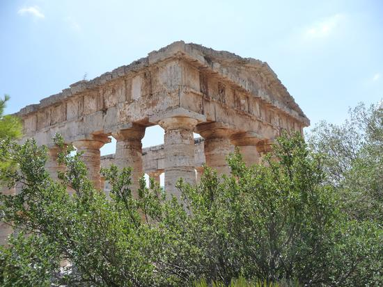 Valle de templi Tempio greco - Segesta (2531 clic)