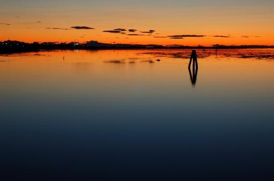 I colori dell'alba - Mestre (3891 clic)