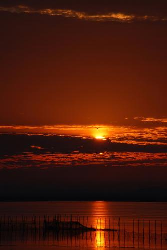 I colori dell'alba - Mira (1746 clic)