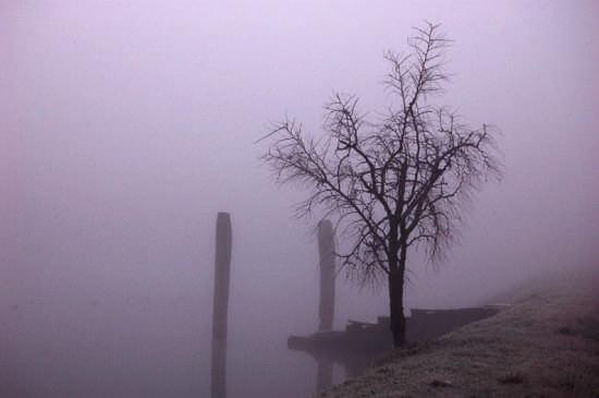 Inverno - Mira (2766 clic)