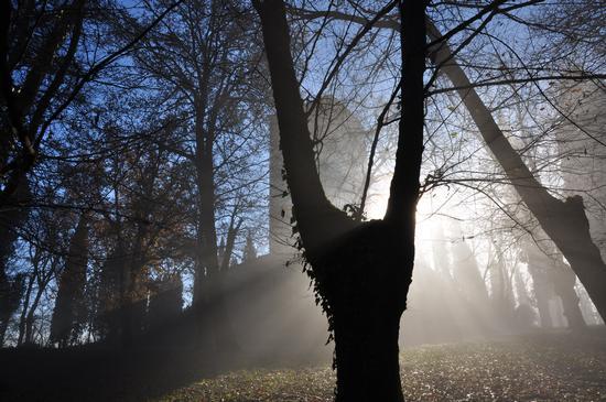 La Rocca tra sole e nebbia. 2 - Solferino (649 clic)