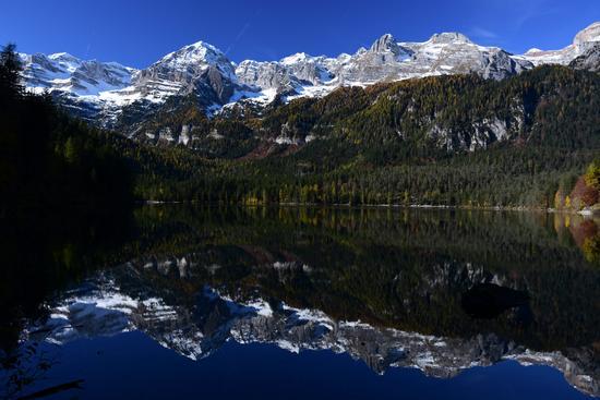 Le Dolomiti di Brenta si specchiano nel lago - Tuenno (475 clic)