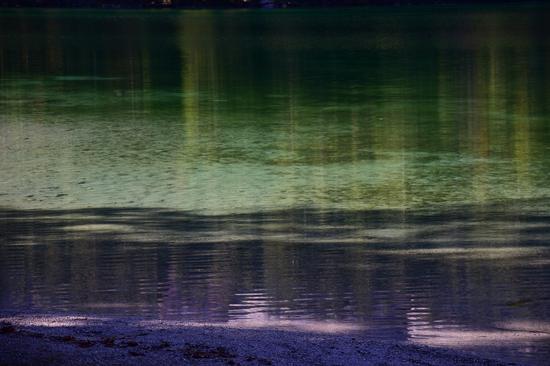 Magia di colori sul Lago di Tovel - Tuenno (484 clic)