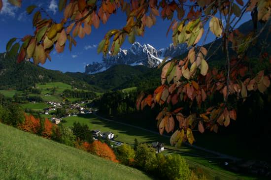 Funes.  Le odle tra le foglie (3134 clic)