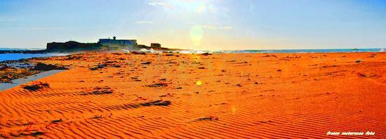 ISOLA DELLE CORRENTI:due mari tra la sabbia (2655 clic)