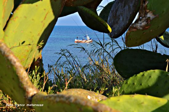 PORTO ULISSE:dietro i fichidindia - Ispica (3388 clic)