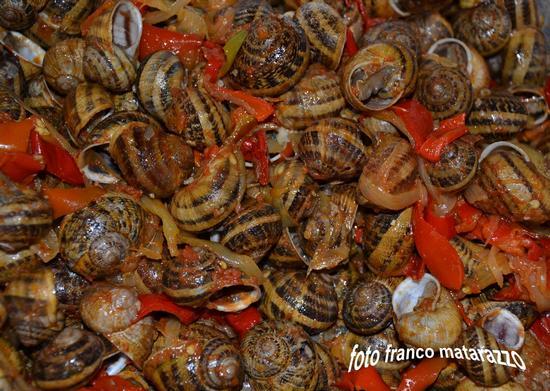 La cucina di Ciccio: lumache, peperoni, cipolla e pmodorini pachino - Rosolini (2993 clic)