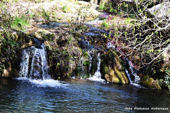 NOTO ANTICA: fiume Asinaro (2334 clic)