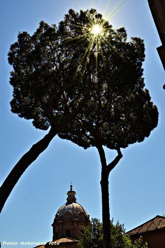 Alla luce del sole - Roma (1205 clic)