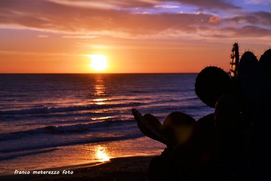 PORTO ULISSE:i miei tramonti dietro il ficodindia - Ispica (2706 clic)
