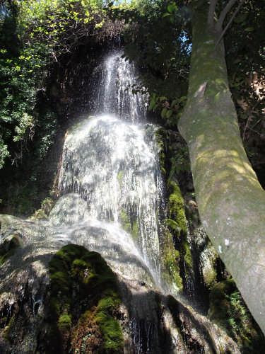 una cascata di fede e di speranza - Laconi (3568 clic)